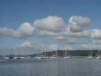 Gosford views over The Broad Water