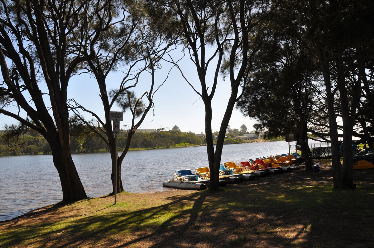 Paddle Boats at Avoca