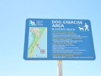 Budgewoi Beach has a dog off leash area