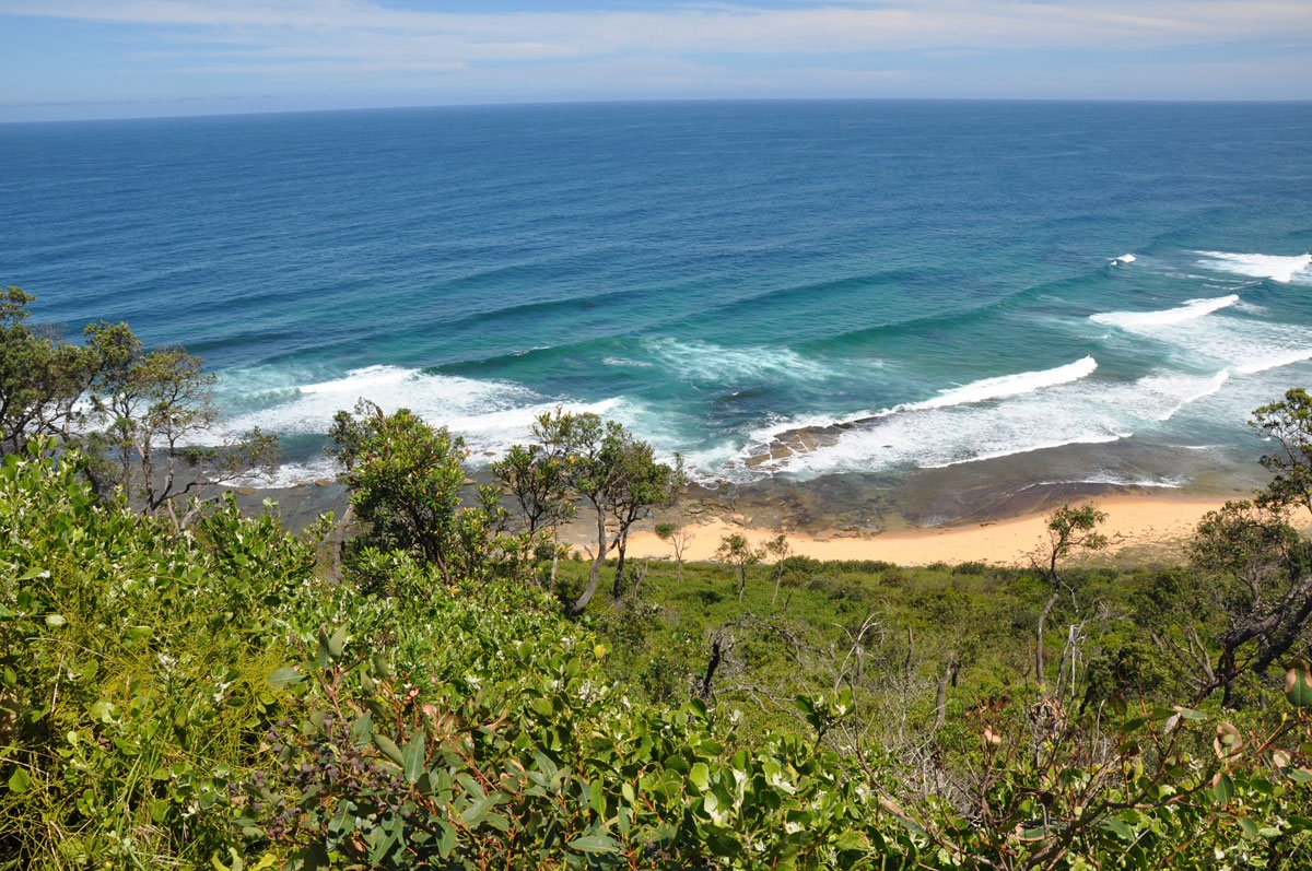 Views over Forresters Beach