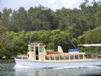 Woy Woy's Cockatoo Ferry