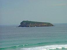 Beautiful Beach In Munmorah State Conservation Area Stock