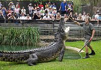 The Australian Reptile Park Gets More Deadly and Dangerous Than Ever These School Holidays