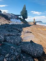Wamberal and North Entrance Coastal Remediation Works Continue