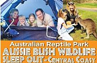 Sleep Under The Stars at The Australian Reptile Park